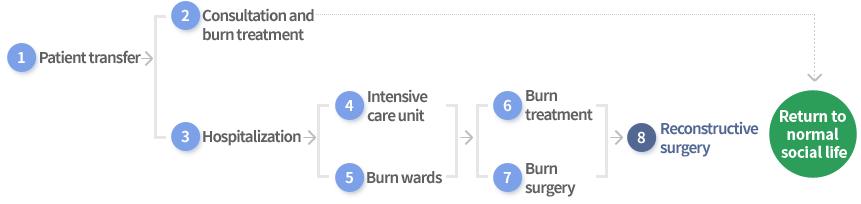 1. 환자이송, 2. 진료 및 화상치료, 3, 입원, 4중환자실, 5화상병동, 6화상치료, 7화상수술, 8재건성형 , 사회복귀